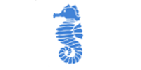 seahorse.png